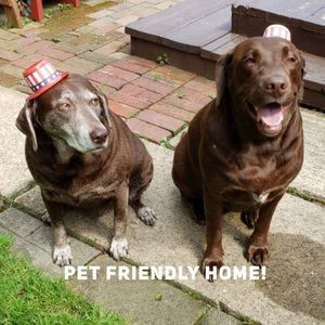 Other - Pet Friendly Home!
